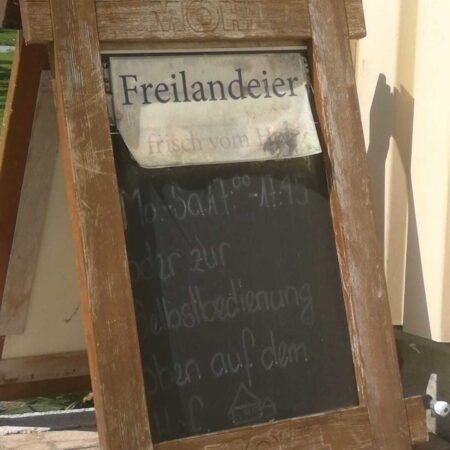 Linguistic Landscape Romanshorn 2021 De di wr